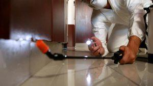 Kitchen Cabinet Pest Care